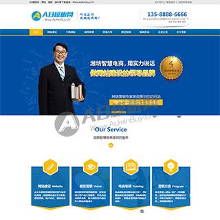 网站建设企业模板 互联网网络营销类网站源码