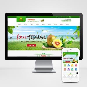 (带手机版数据同步)蔬菜果蔬鲜果配送