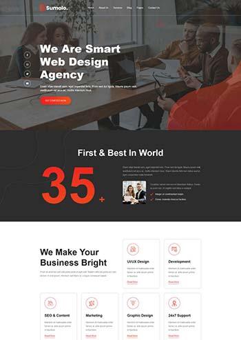 web软件应用开发公司官网html5模板